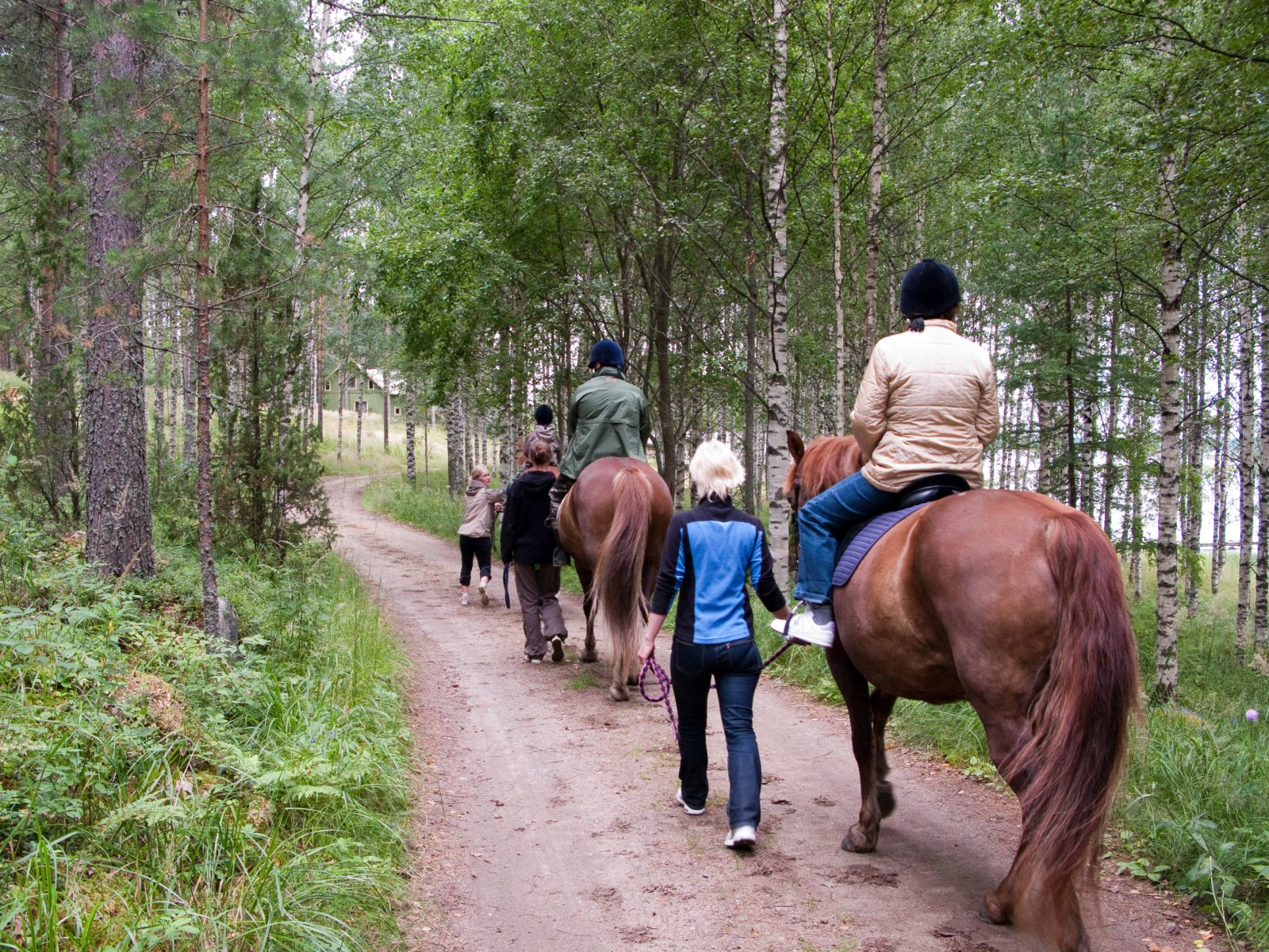 Riding trip with trustworthy Finnish horses