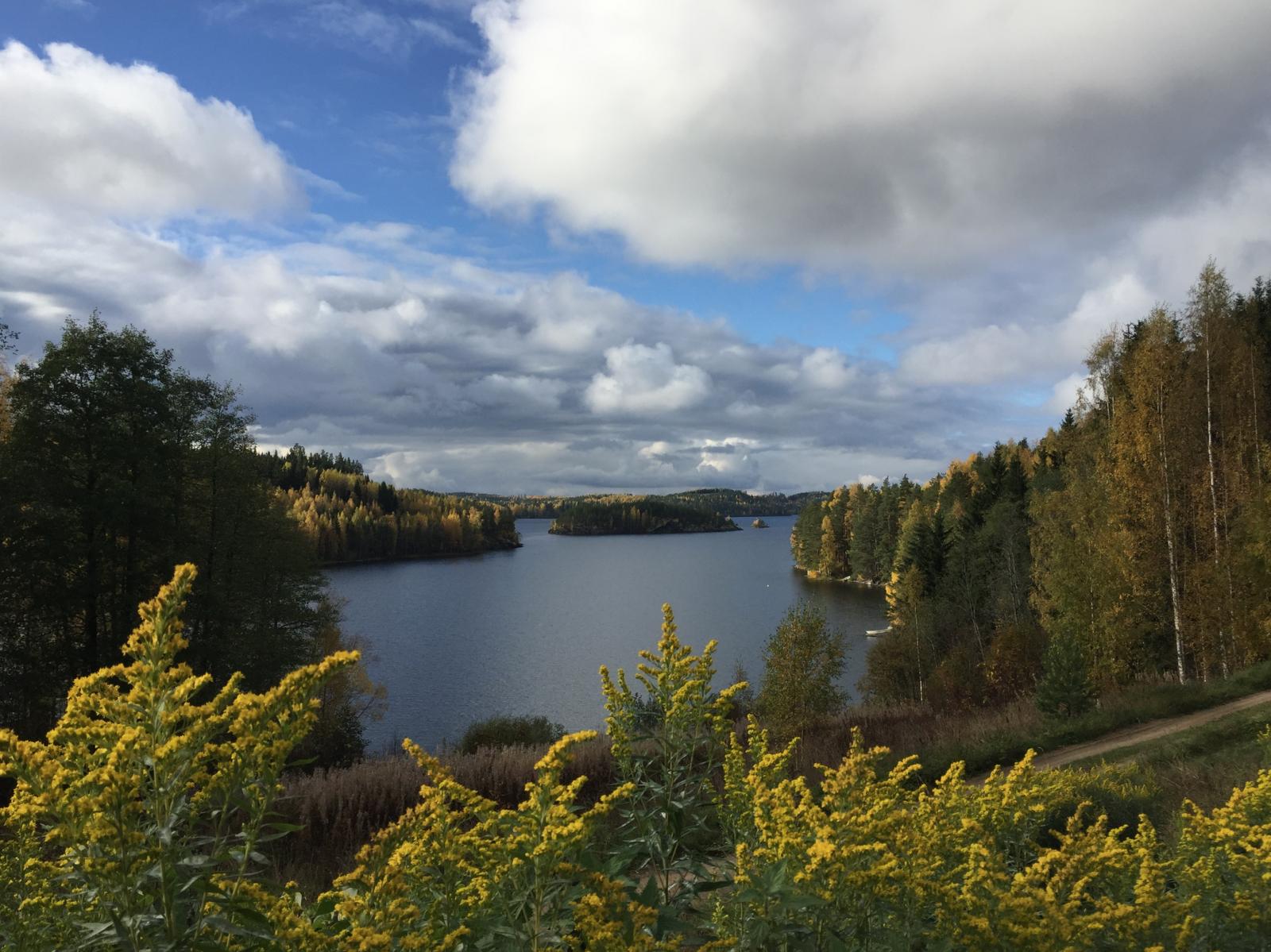 Maisemakahvio – Tynkkylän Lomaniemi
