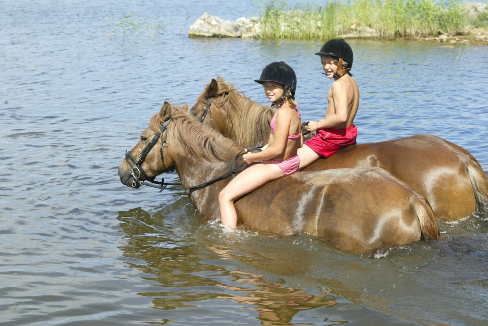 Riding trip with trustworthy Finnish horses