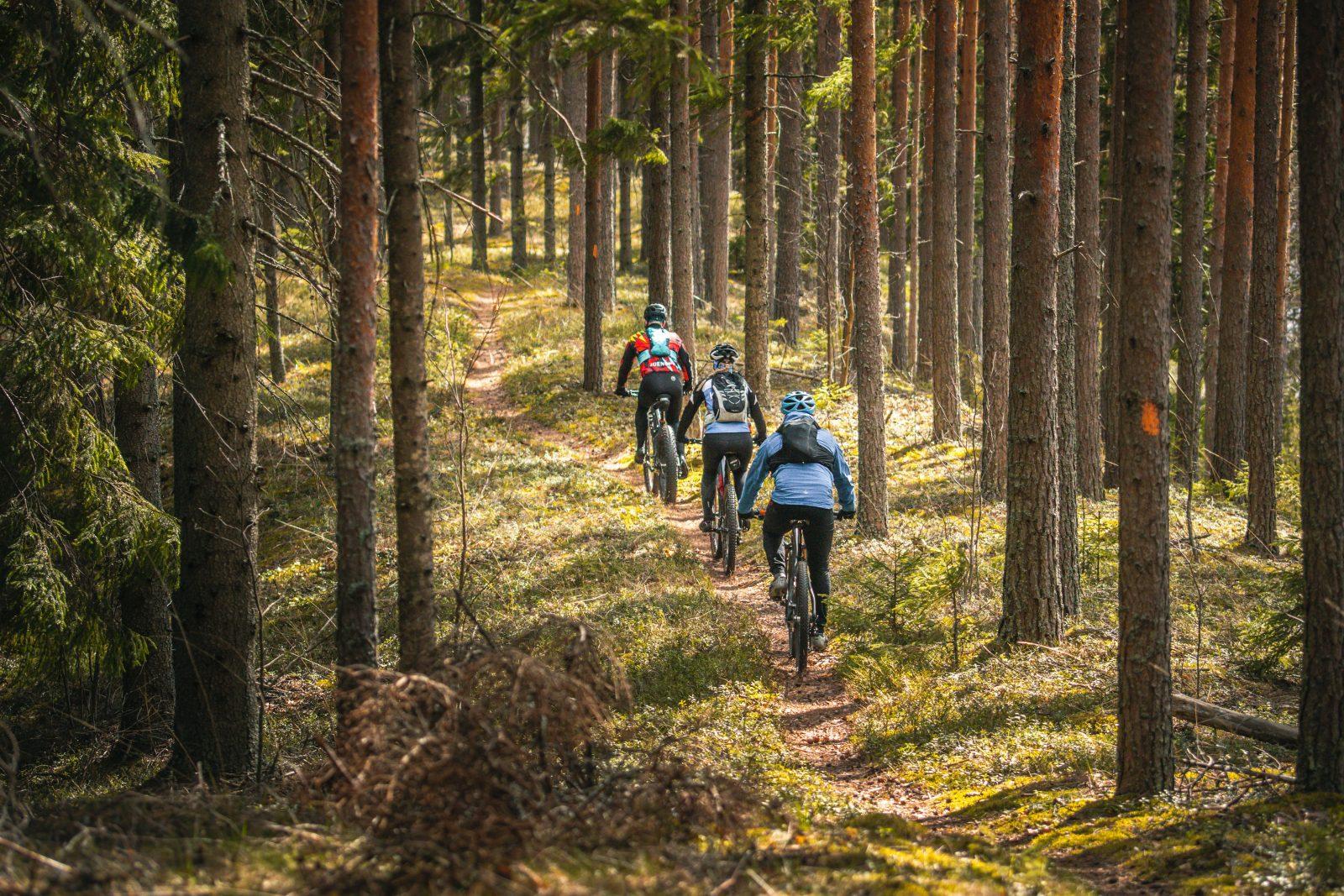 Kulennoisharju-Huosio MTB 18-35 km