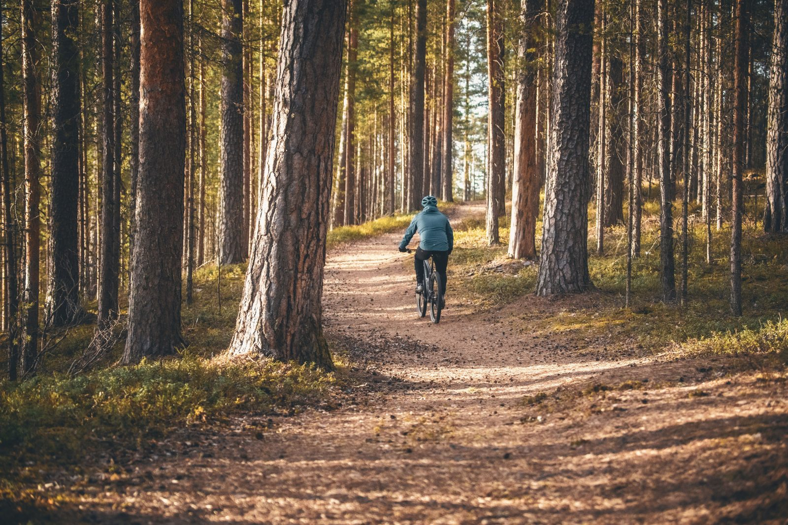 Mustaniemi-Kuikonniemi MTB 8 km
